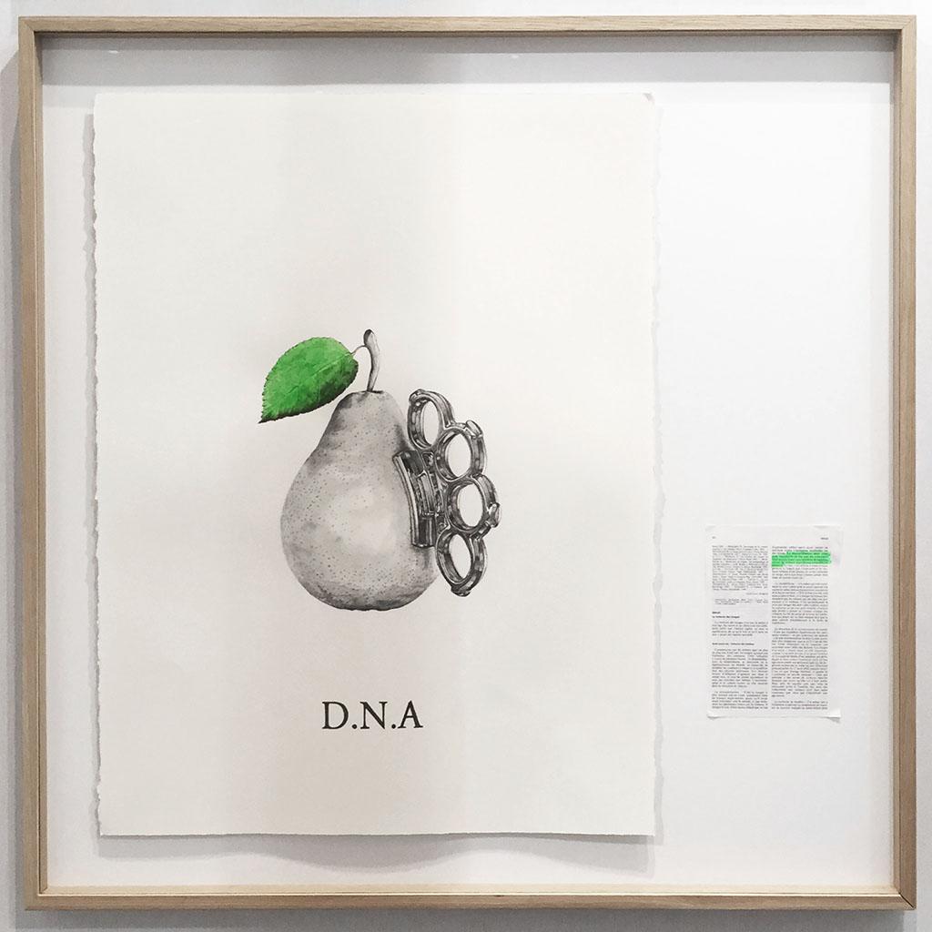 D.N.A 2017