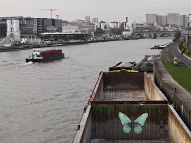 e-Lepidoptera ludo street paris