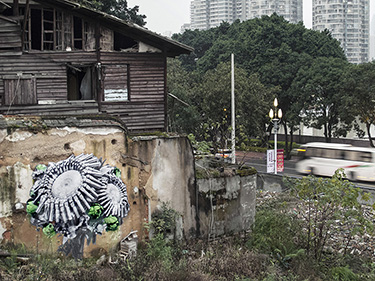 GunflowersBouquet_Fuzhou_2016_1